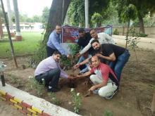 School Plantation Drive at KV No.1, AFS, Agra